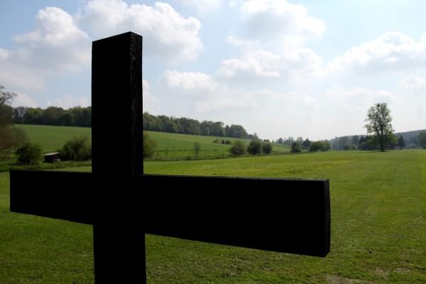 activity-field-cross
